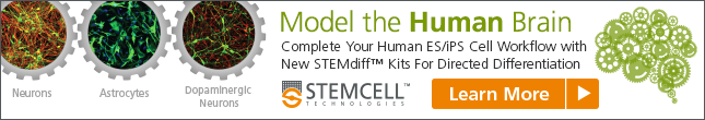 Learn more: New STEMdiff™ Differentiation and Maturation Kits